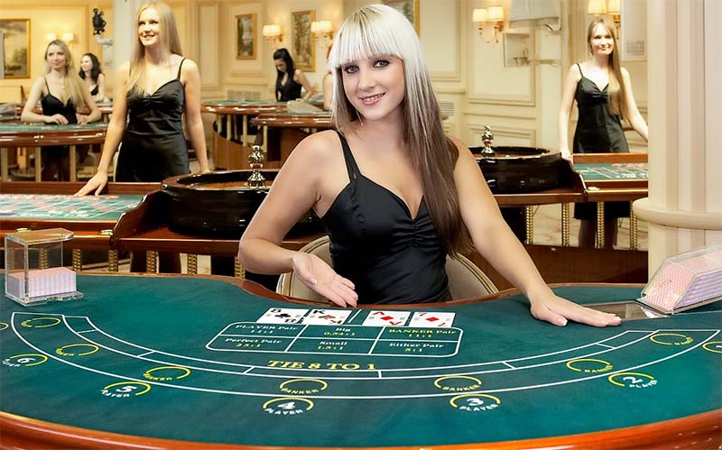 Live blackjack is among the most popular with beginners to gambling sites
