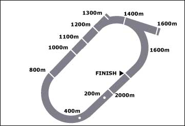 Map of the Ararat horse racing track