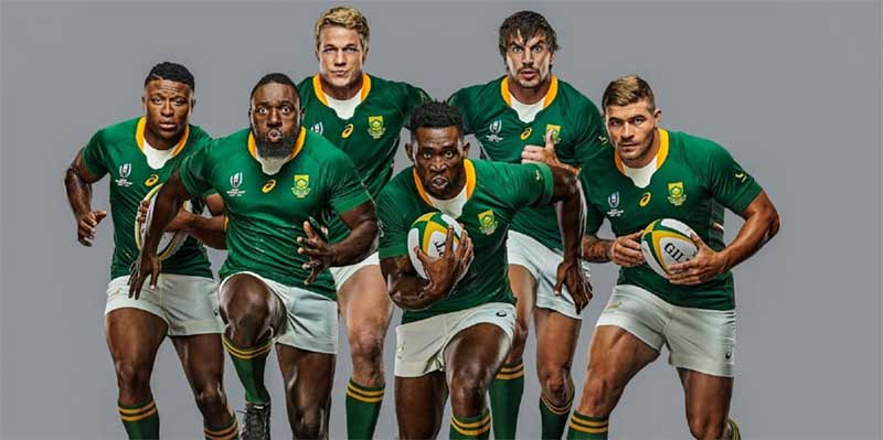 South Africa Rugby World Cup news and predictions
