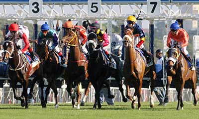Horse Racing betting laws in South Africa