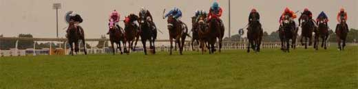 Turfontein horse racing in South Africa