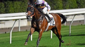 Tsar breaks the course record at Happy Valley on May 27, 2021